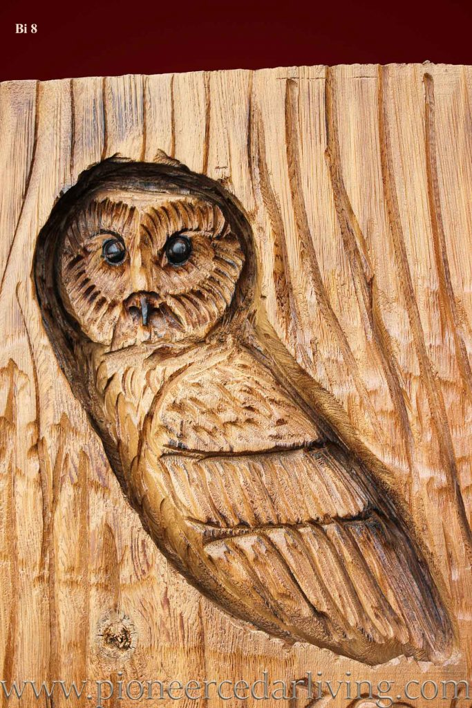 Owl chainsaw relief carving pioneer cedar living