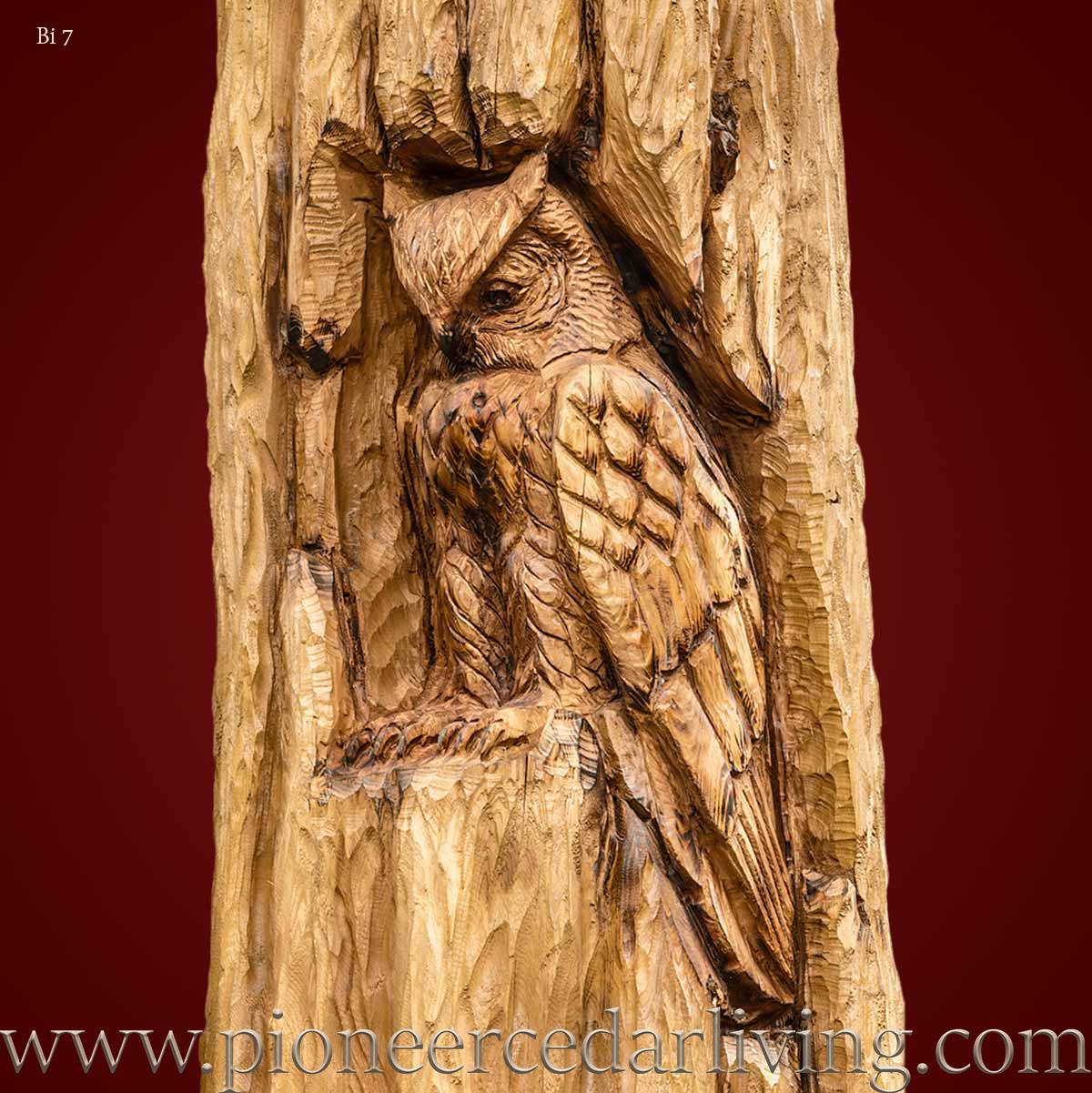 Horned owl cedar relief carving