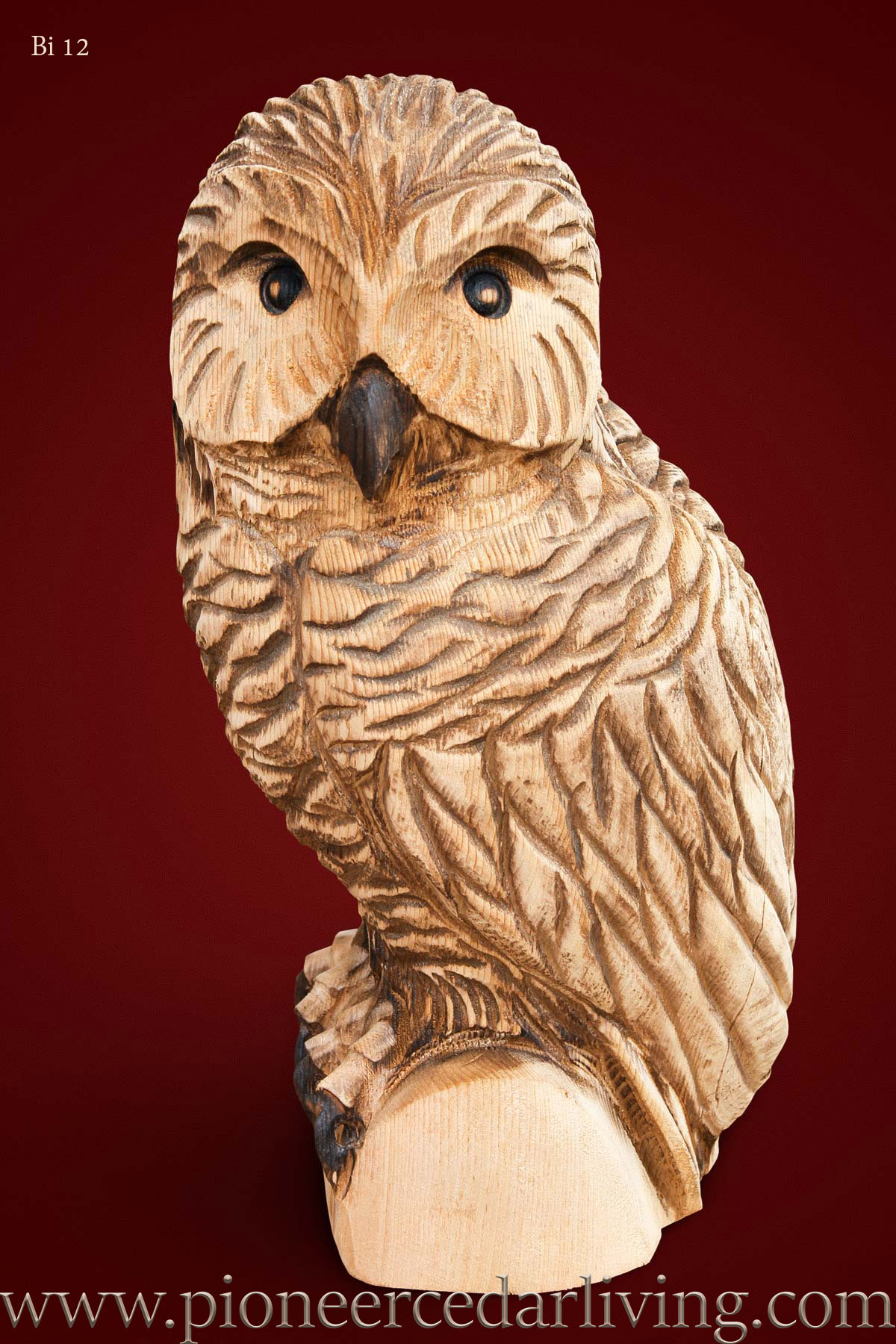 Owl chainsaw carving pioneer cedar living